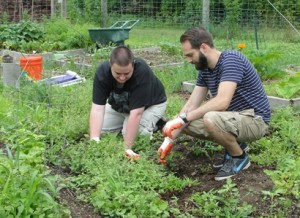 Artie and CAREERS Community Instructor, Dave Duncan, gardening at Tilly Foster Farm.